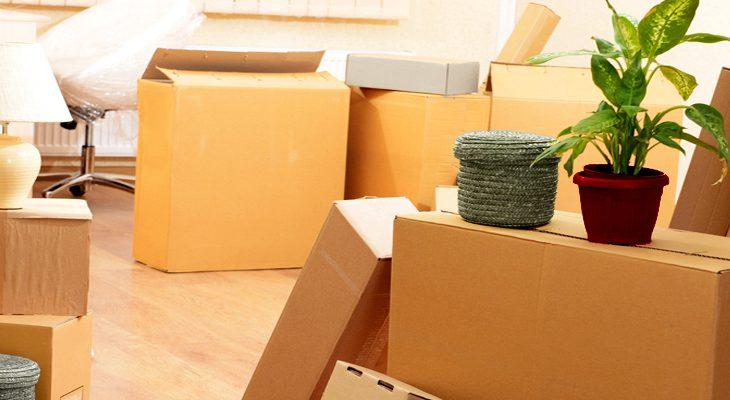 Annexx, votre spécialiste dans la location de box de stockage et de matériel de déménagement !